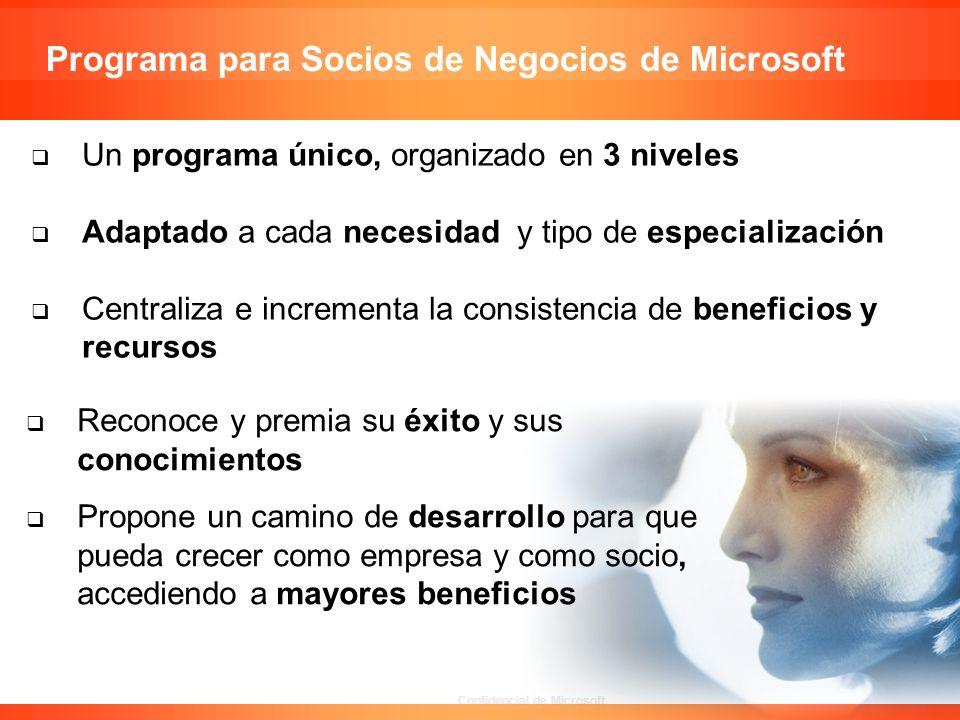 Programa para Socios de Negocios de Microsoft