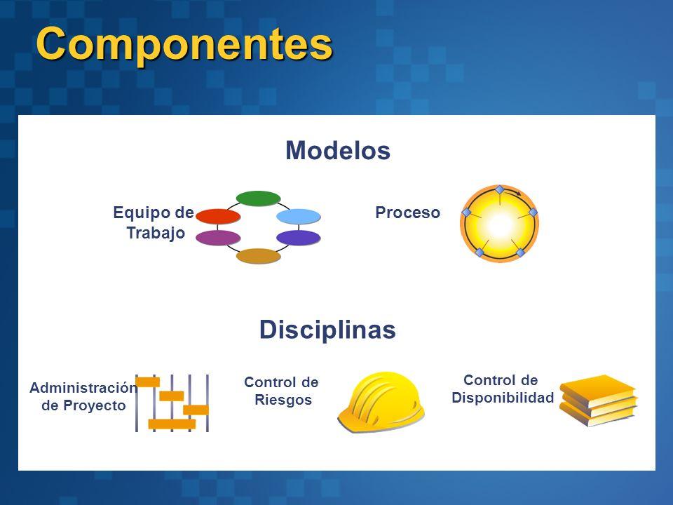 Componentes Modelos Disciplinas Equipo de Proceso Trabajo Control de