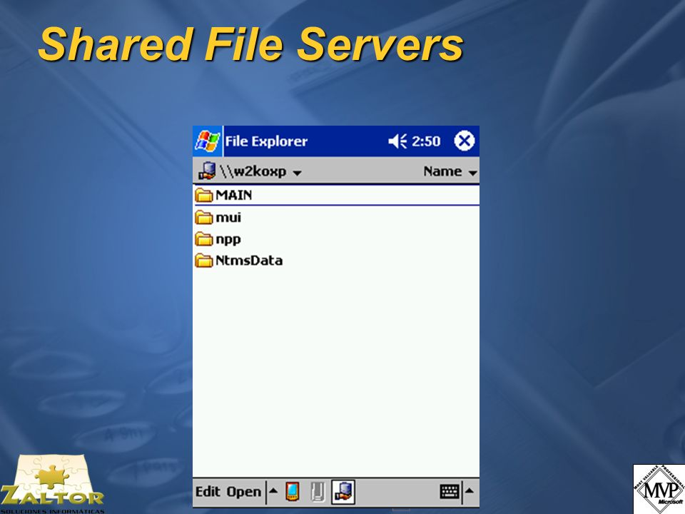 Shared File Servers