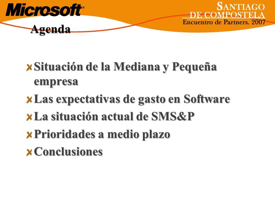 AgendaSituación de la Mediana y Pequeña empresa. Las expectativas de gasto en Software. La situación actual de SMS&P.