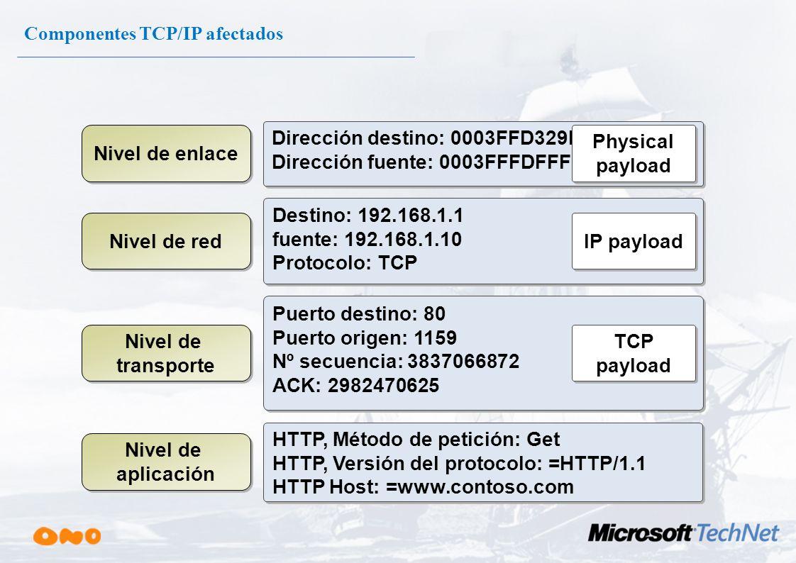 Componentes TCP/IP afectados