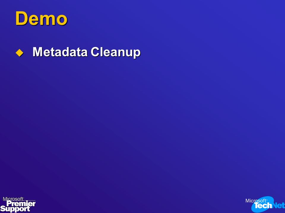 Demo Metadata Cleanup