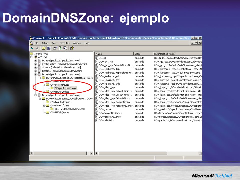 DomainDNSZone: ejemplo