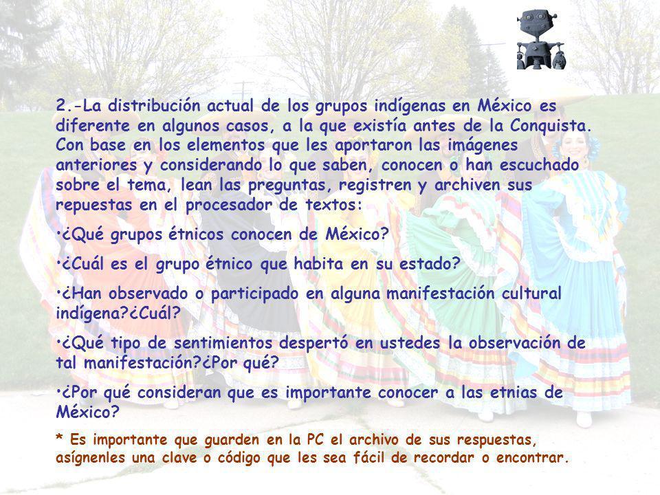 ¿Qué grupos étnicos conocen de México