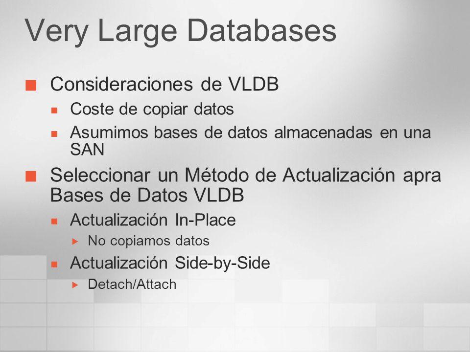 Very Large Databases Consideraciones de VLDB