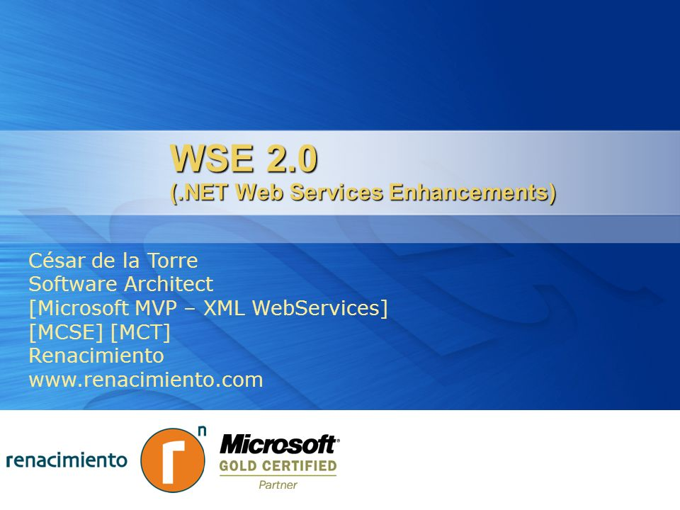 WSE 2.0 (.NET Web Services Enhancements)