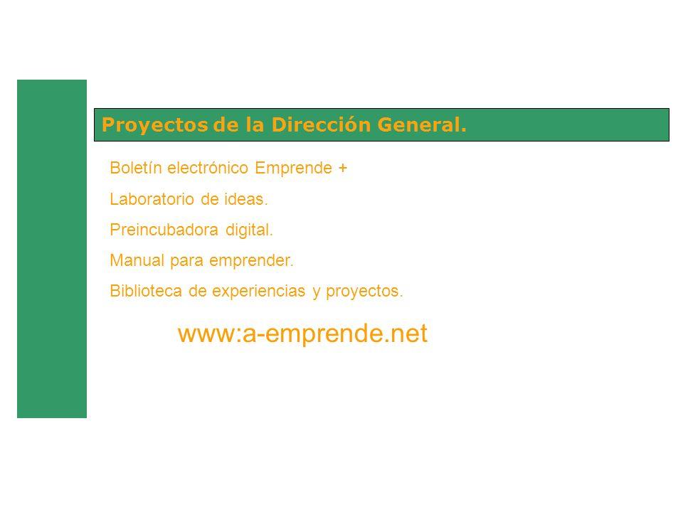 Proyectos de la Dirección General.