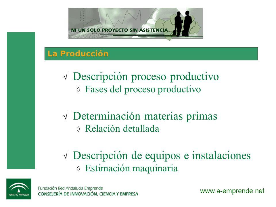 Descripción proceso productivo