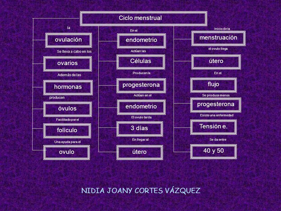 NIDIA JOANY CORTES VÁZQUEZ
