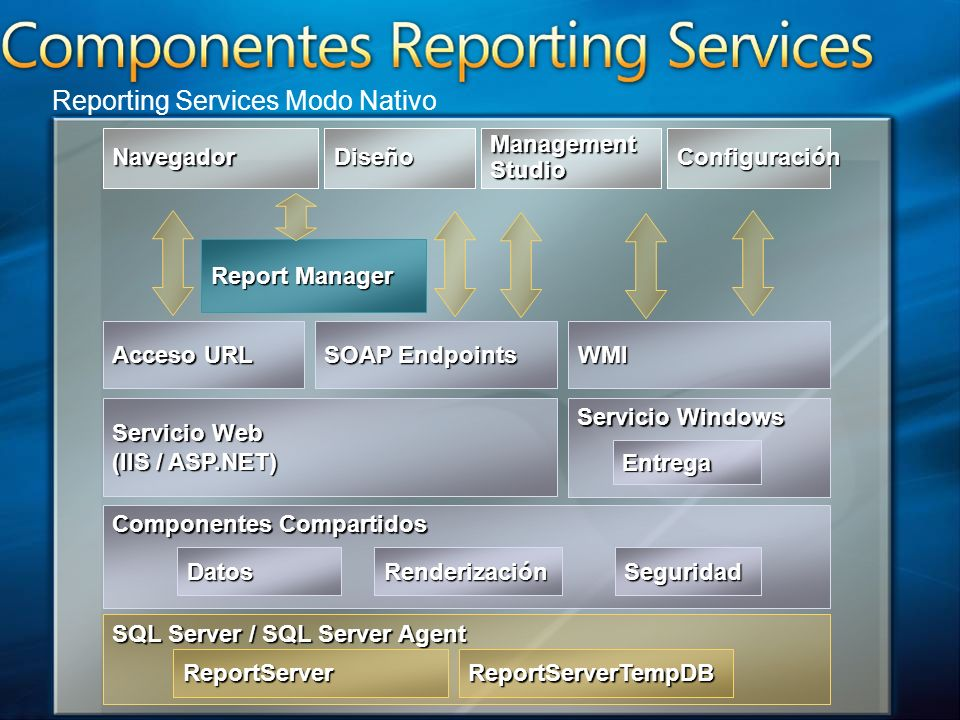 Reporting Services Modo Nativo
