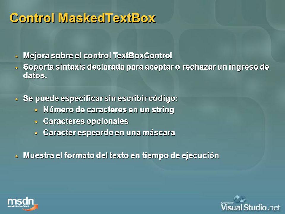 Control MaskedTextBox