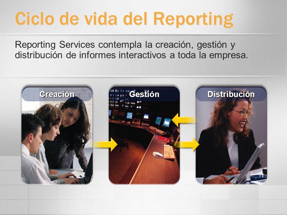 Ciclo de vida del Reporting