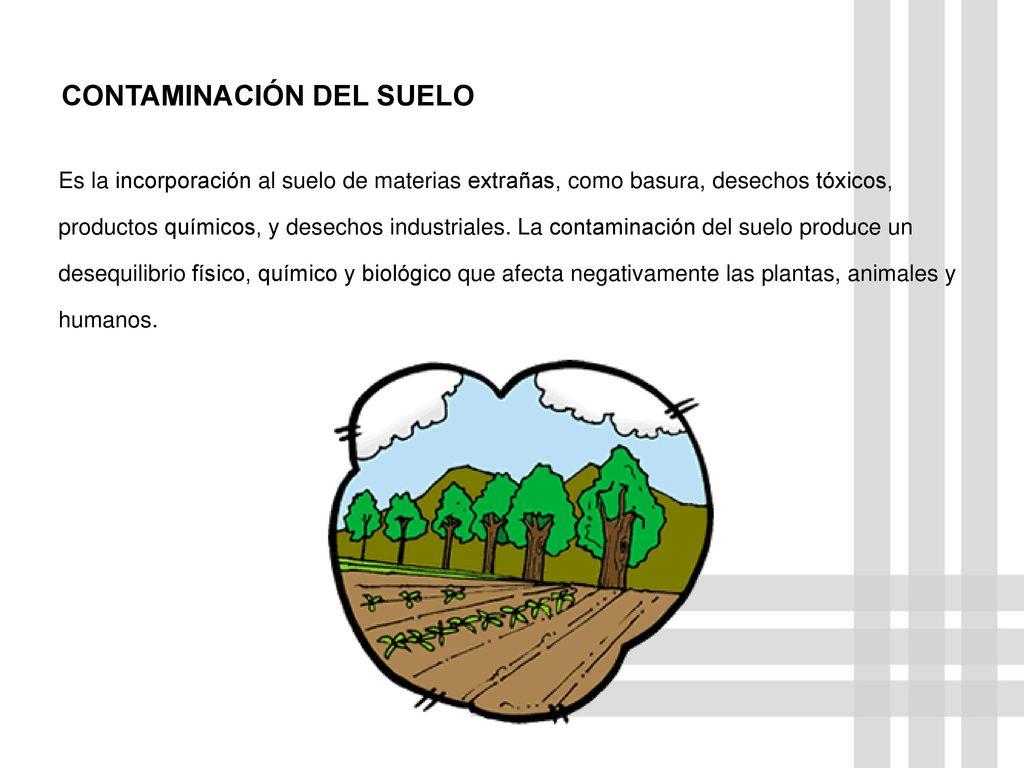 Ecolog a humana contaminaci n y salud la contaminaci n 1 for Componentes quimicos del suelo
