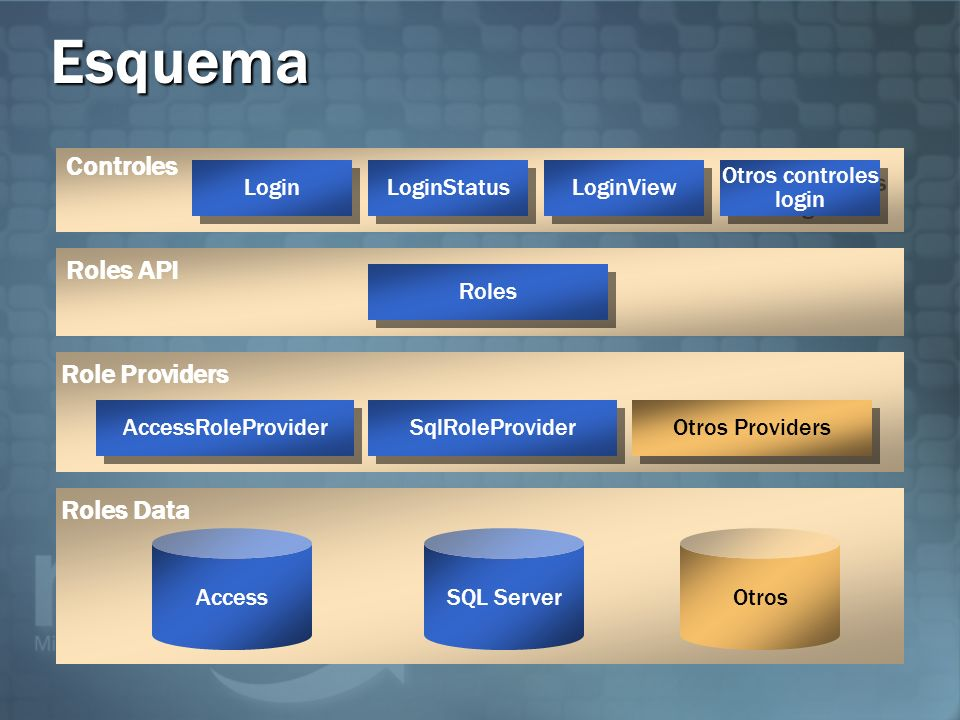 Esquema Controles Roles API Role Providers Roles Data Login