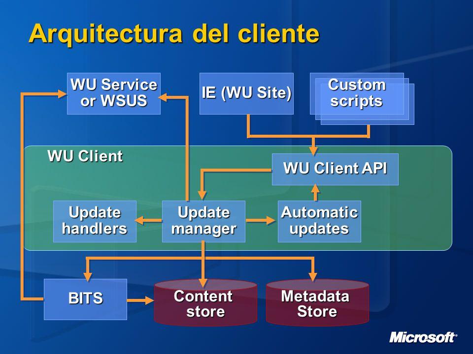 Arquitectura del cliente