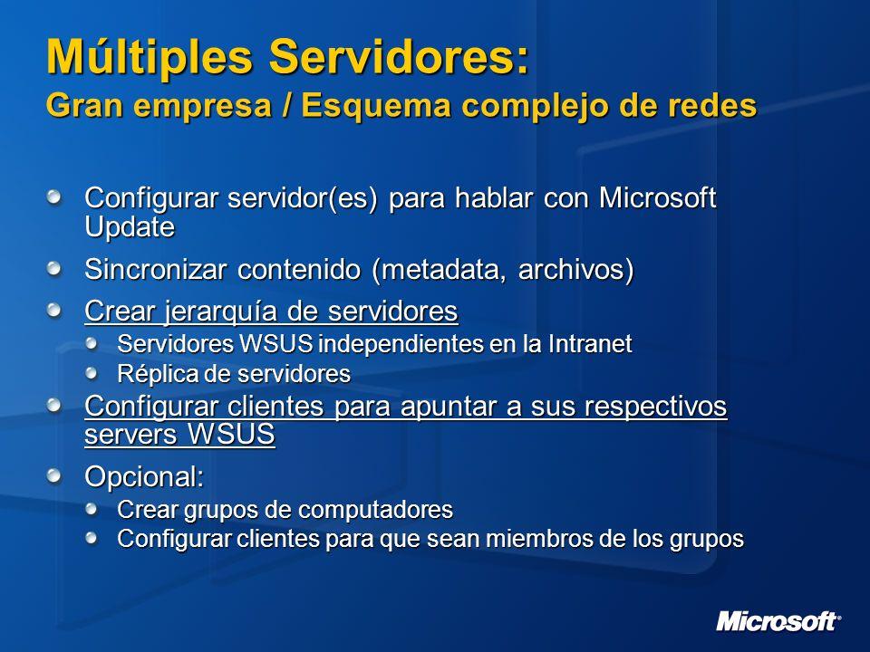 Múltiples Servidores: Gran empresa / Esquema complejo de redes