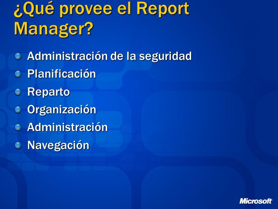 ¿Qué provee el Report Manager