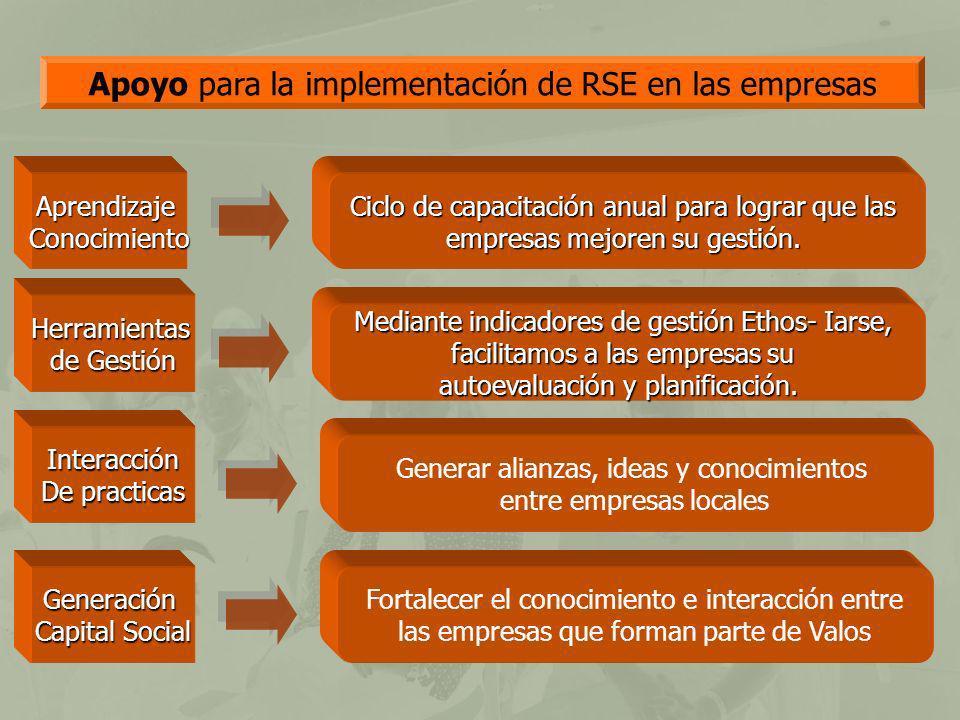 Apoyo para la implementación de RSE en las empresas