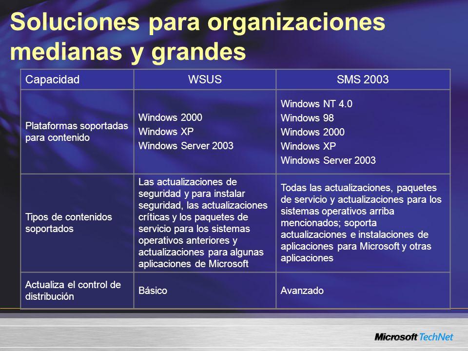 Soluciones para organizaciones medianas y grandes