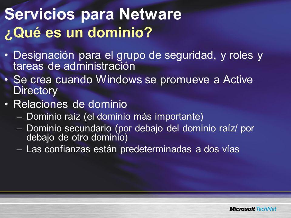 Servicios para Netware ¿Qué es un dominio