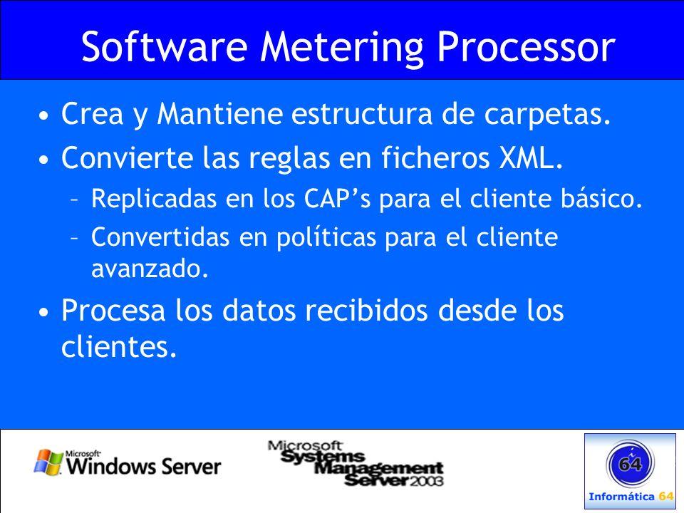 Software Metering Processor