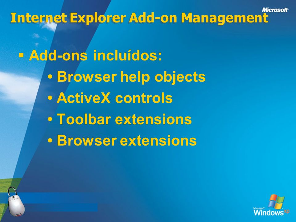 Internet Explorer Add-on Management