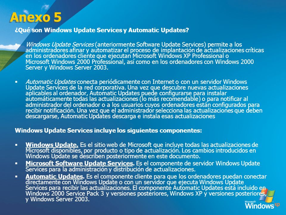 Anexo 5 ¿Qué son Windows Update Services y Automatic Updates