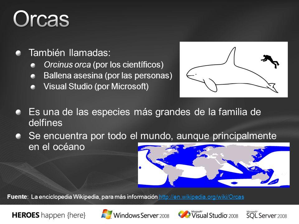Orcas También llamadas: