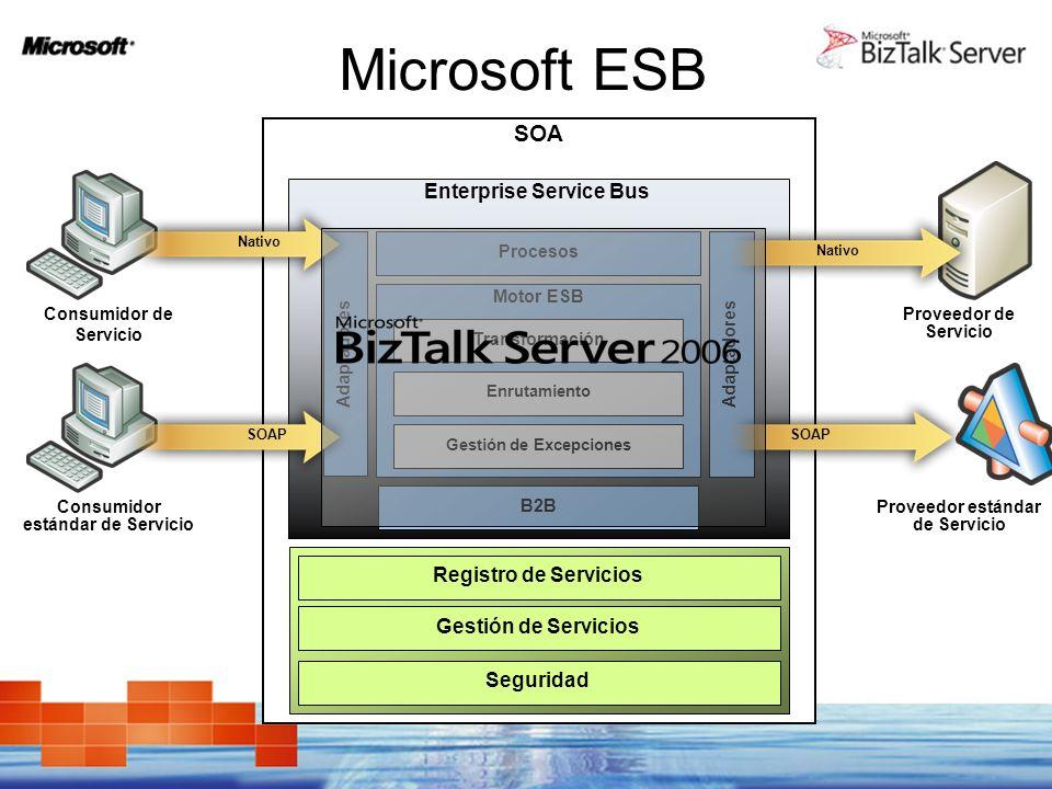 Microsoft ESB SOA Enterprise Service Bus Registro de Servicios