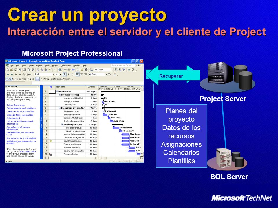 Microsoft Project Professional