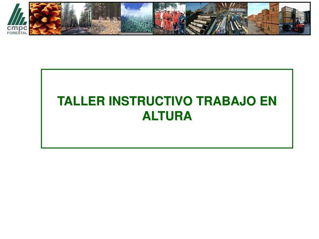 Bonito Reanudar Taller Fotos - Colección De Plantillas De Curriculum ...