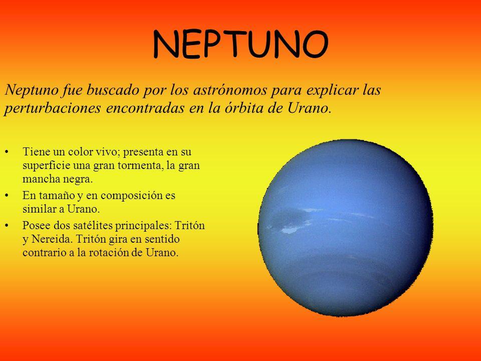 NEPTUNO Neptuno fue buscado por los astrónomos para explicar las perturbaciones encontradas en la órbita de Urano.