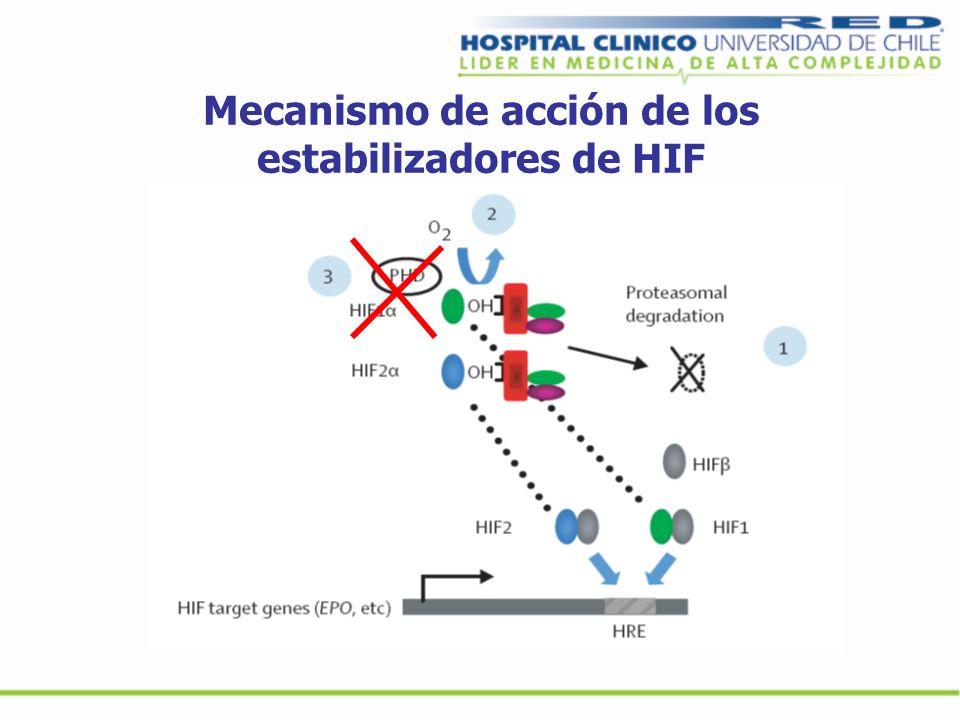 Mecanismo de acción de los estabilizadores de HIF