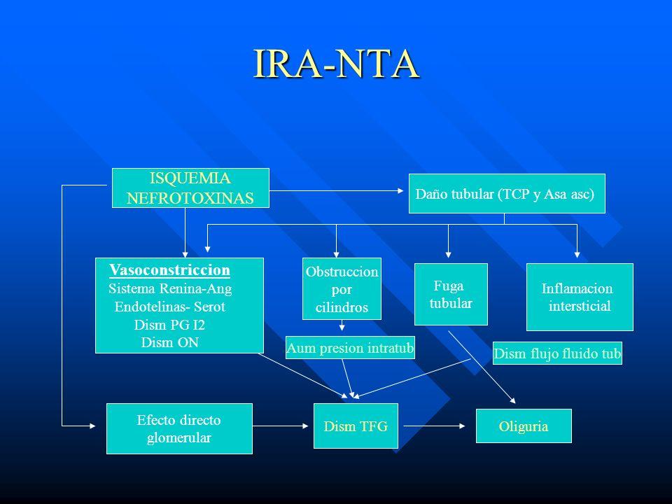 IRA-NTA ISQUEMIA NEFROTOXINAS Vasoconstriccion