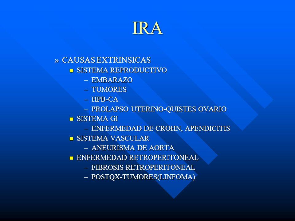 IRA CAUSAS EXTRINSICAS SISTEMA REPRODUCTIVO EMBARAZO TUMORES HPB-CA