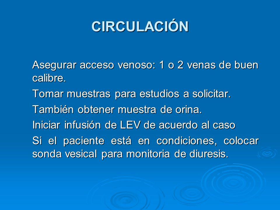CIRCULACIÓN Asegurar acceso venoso: 1 o 2 venas de buen calibre.