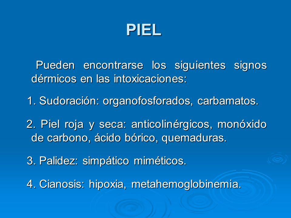 PIEL Pueden encontrarse los siguientes signos dérmicos en las intoxicaciones: 1. Sudoración: organofosforados, carbamatos.