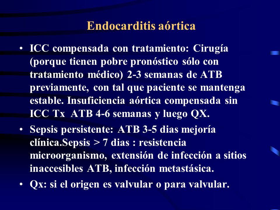 Endocarditis aórtica
