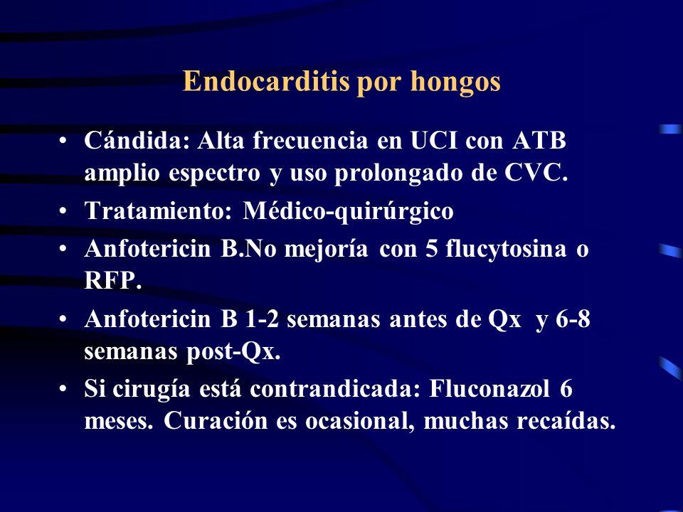 Endocarditis por hongos