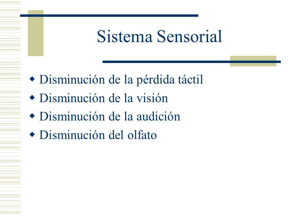 Sistema Sensorial Disminución de la pérdida táctil