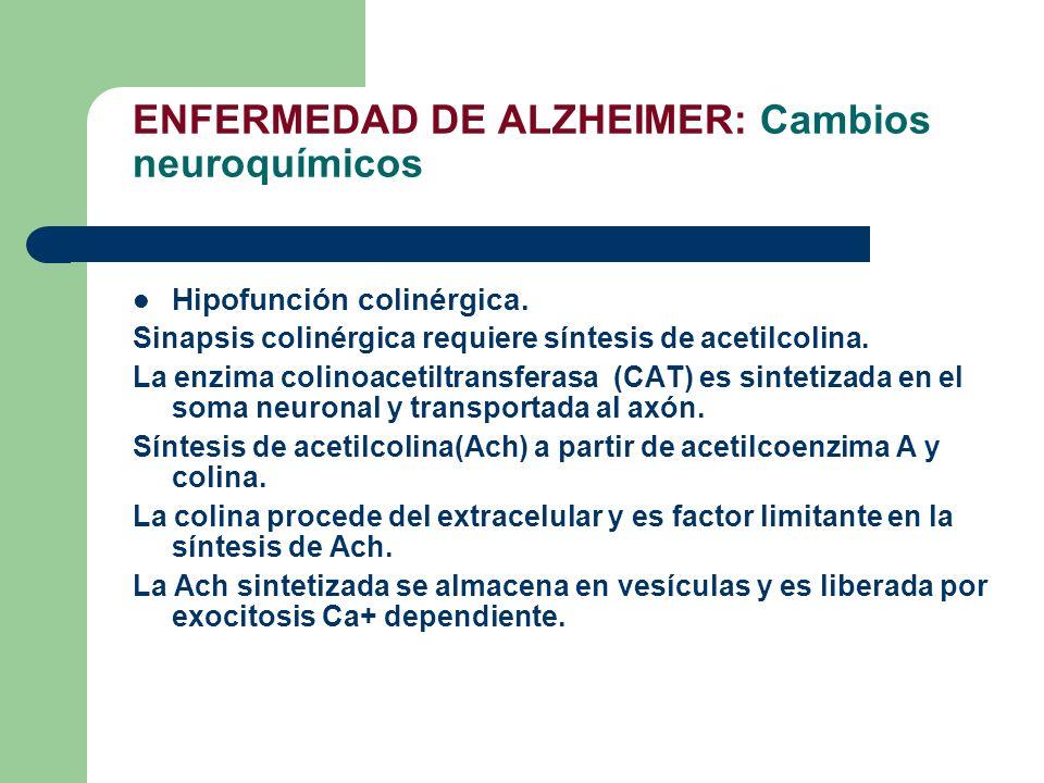 ENFERMEDAD DE ALZHEIMER: Cambios neuroquímicos