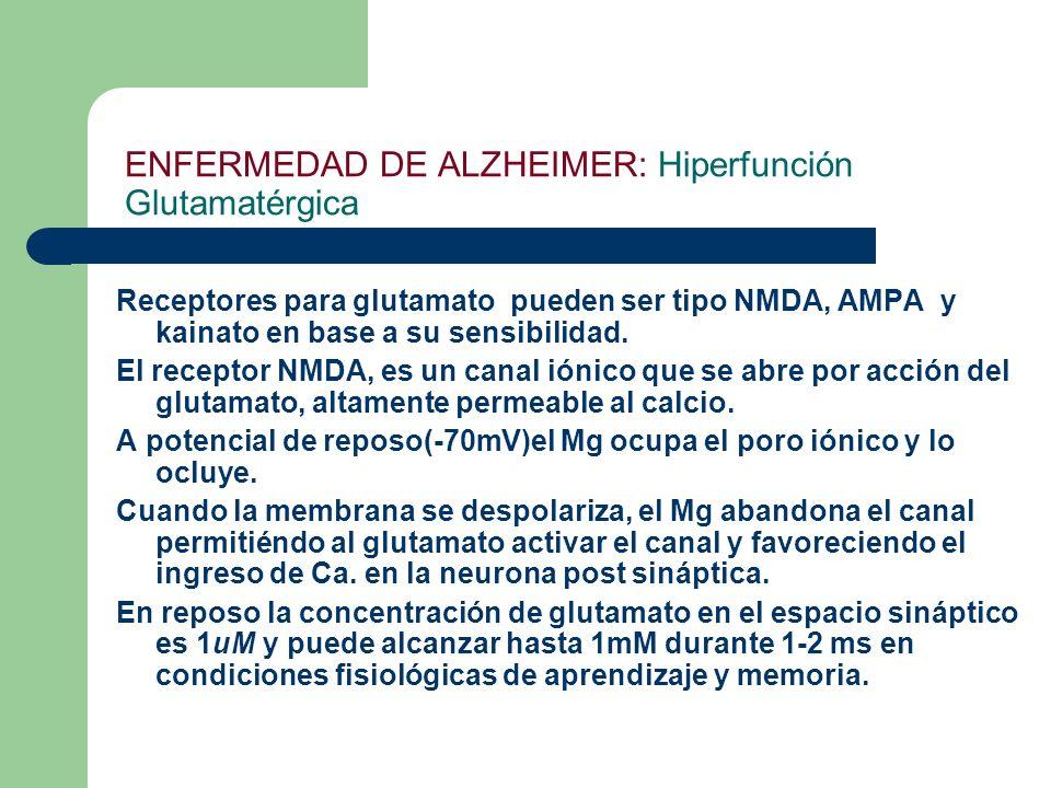 ENFERMEDAD DE ALZHEIMER: Hiperfunción Glutamatérgica