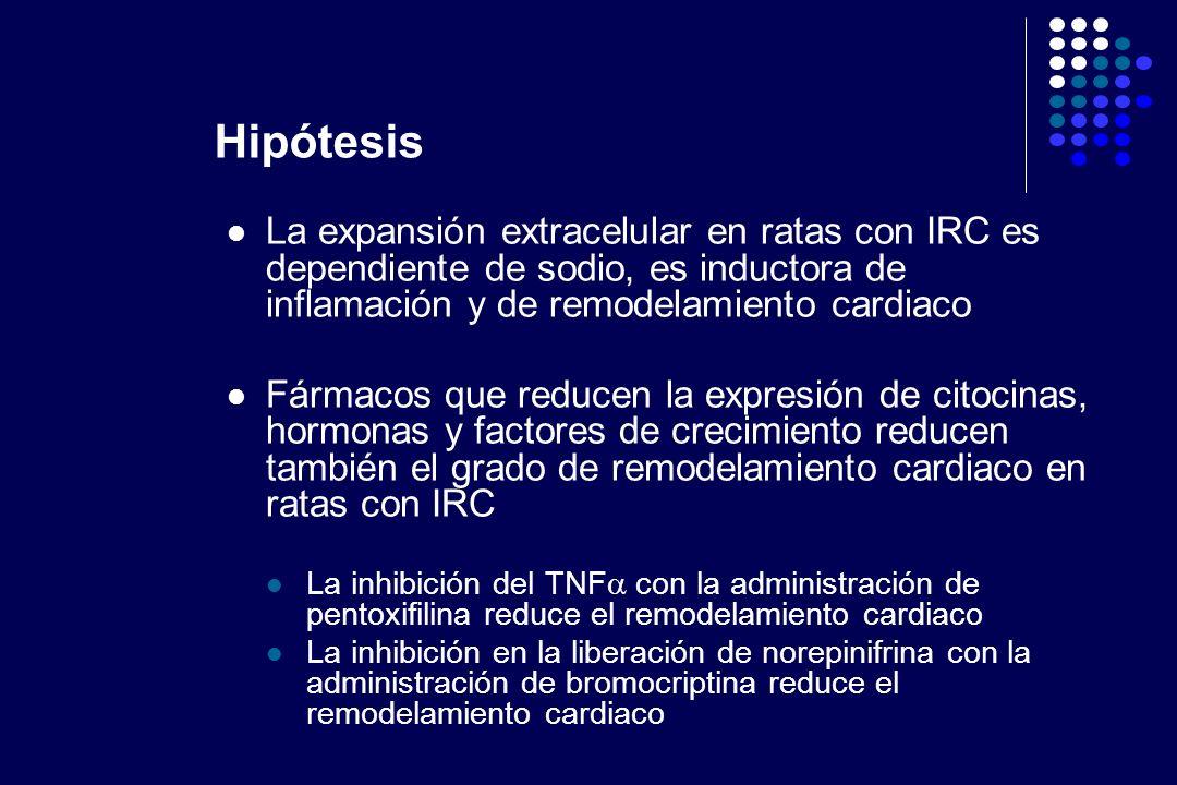HipótesisLa expansión extracelular en ratas con IRC es dependiente de sodio, es inductora de inflamación y de remodelamiento cardiaco.