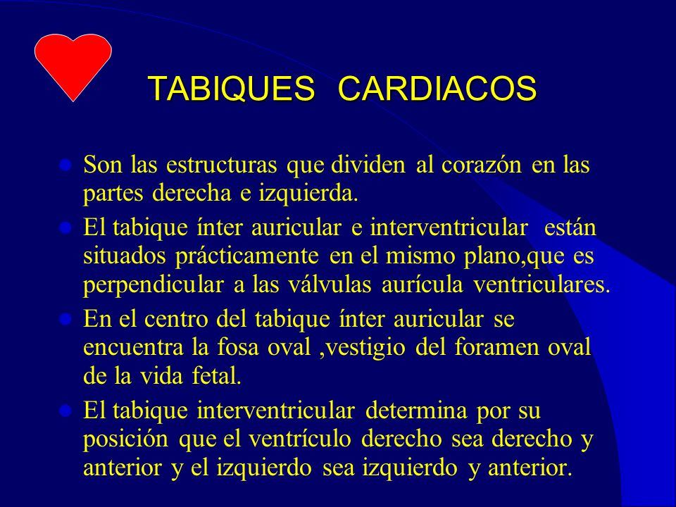 TABIQUES CARDIACOS Son las estructuras que dividen al corazón en las partes derecha e izquierda.