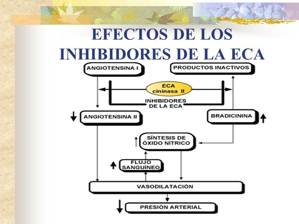 EFECTOS DE LOS INHIBIDORES DE LA ECA