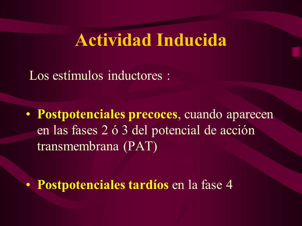 Actividad Inducida Los estímulos inductores :