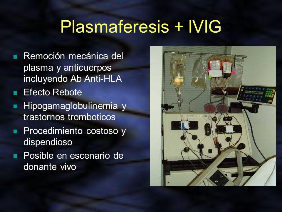 Plasmaferesis + IVIG Remoción mecánica del plasma y anticuerpos incluyendo Ab Anti-HLA. Efecto Rebote.