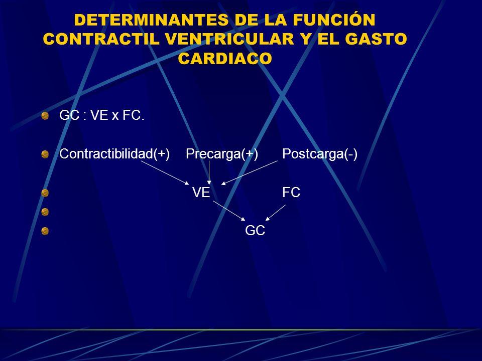 DETERMINANTES DE LA FUNCIÓN CONTRACTIL VENTRICULAR Y EL GASTO CARDIACO