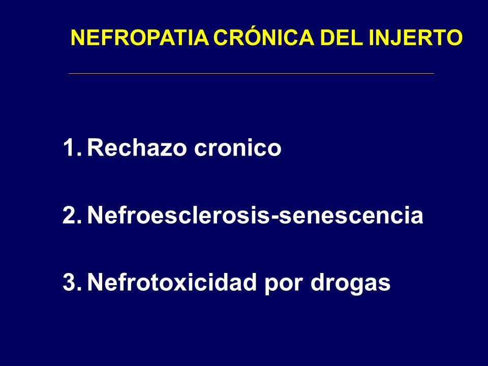 Nefroesclerosis-senescencia Nefrotoxicidad por drogas