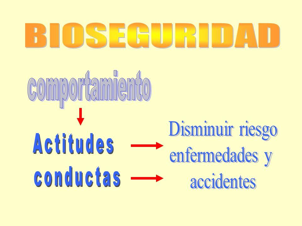 BIOSEGURIDAD comportamiento Disminuir riesgo enfermedades y Actitudes